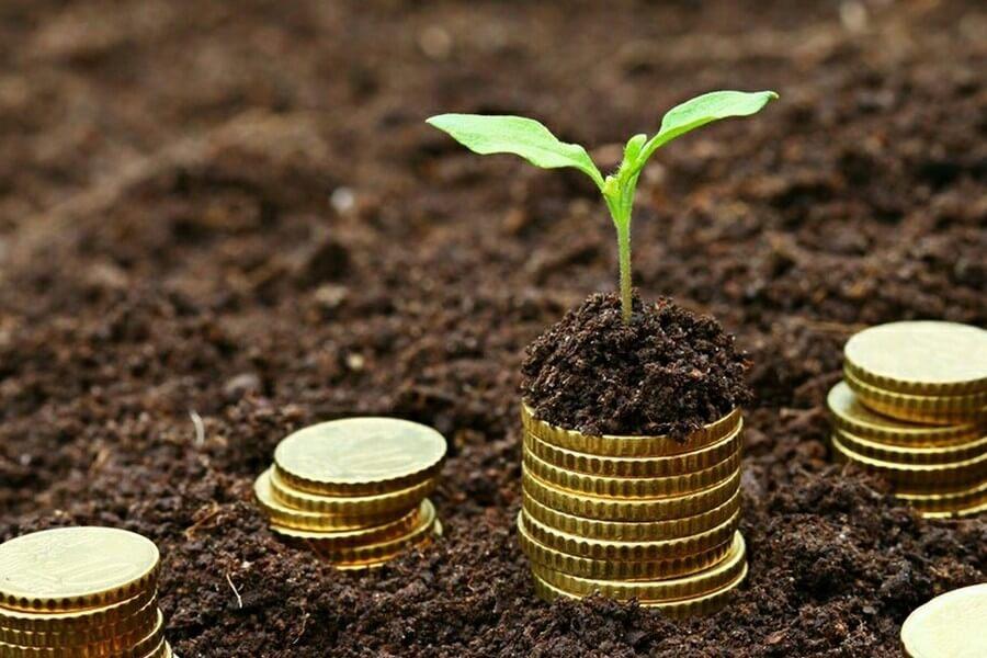Инвестиции в землю и земельные участки: стоит ли вкладываться?